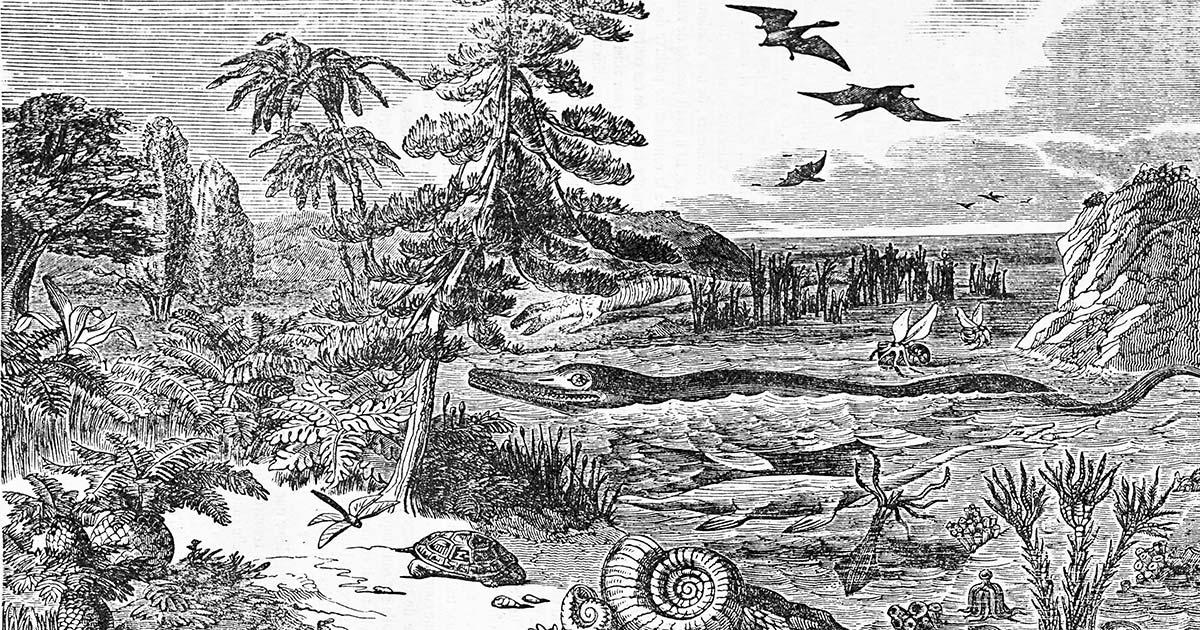 Le bizzarre teorie negazioniste sull'evoluzione. Evoluzione_specie