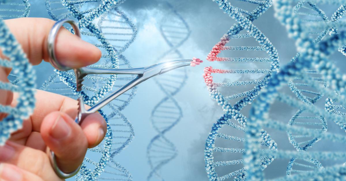 Sono due gemelle i primi esseri umani geneticamente modificati