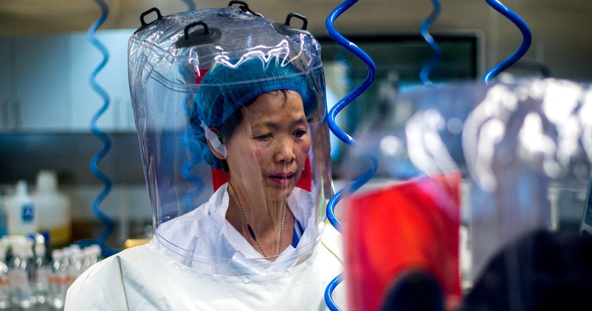 """Shi Zengli: """"La pandemia non è partita da Wuhan"""". E chiede agli Usa di scusarsi Shi_zengli"""