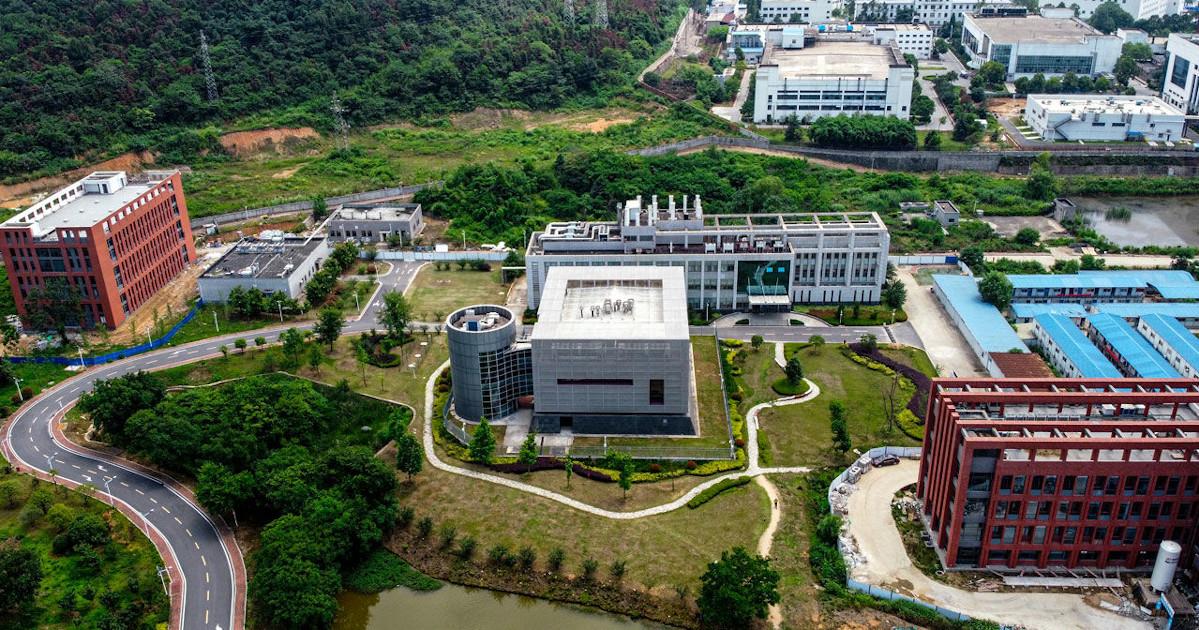 """Shi Zengli: """"La pandemia non è partita da Wuhan"""". E chiede agli Usa di scusarsi Wuhan_institute_of_virology"""
