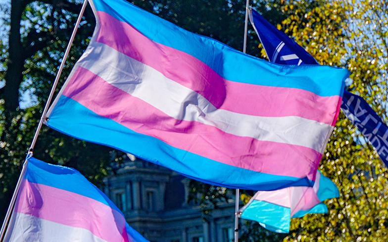 Trans Day of Remembrance per non dimenticare le vittime della violenza | Il  Bo Live UniPD