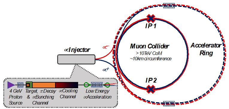 Muon Collider fig 2
