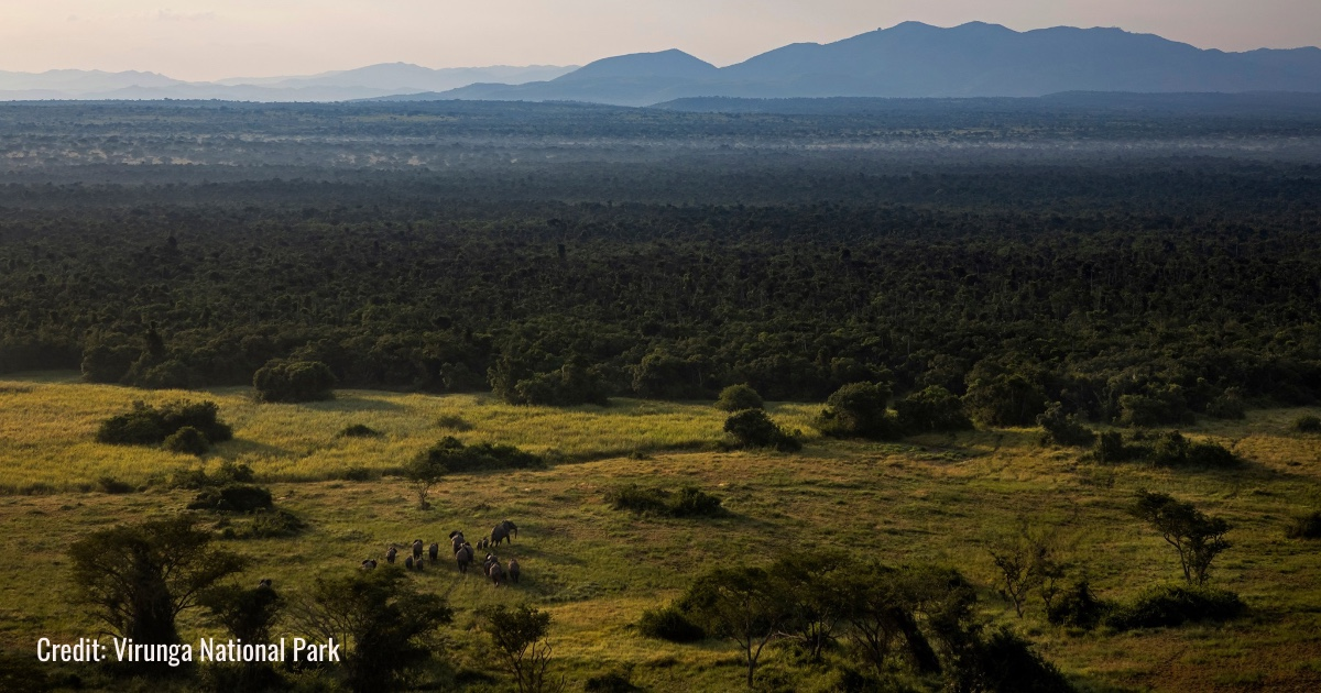 Parco nazionale dei Virunga