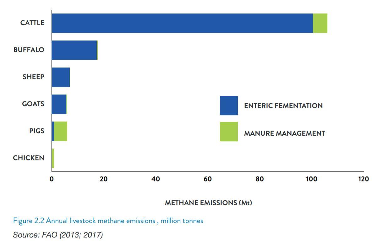 emissioni metano
