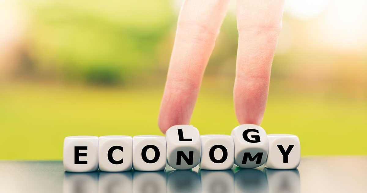 economy ecology