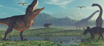 Quanti T-rex sono esistiti? Secondo il primo censimento circa 2,5 miliardi