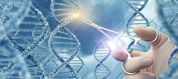Il prequel di CRISPR/Cas9: tanti inizi per una storia dal gran finale