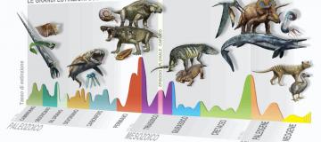 Episodio pluviale carnico, il nuovo evento di estinzione da cui iniziò il mondo che conosciamo oggi