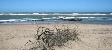 """Erosione costiera: """"Si intravede un miglioramento"""""""