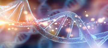 La biodiversità micologica alla prova del DNA