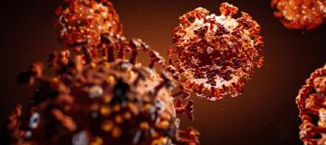 Da pandemico a endemico: quale futuro per Sars-Cov-2