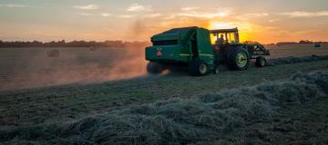 L'insostenibilità del sistema alimentare