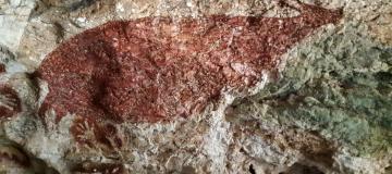 Le prime pitture rupestri minacciate dal cambiamento climatico