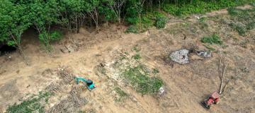 Nel 2020 sono stati uccisi 227 ambientalisti in tutto il mondo
