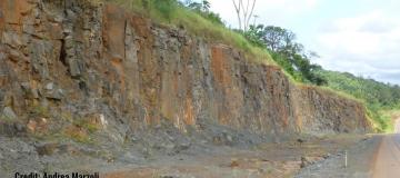 Estinzione di massa di fine Triassico: nuove scoperte da uno studio Unipd