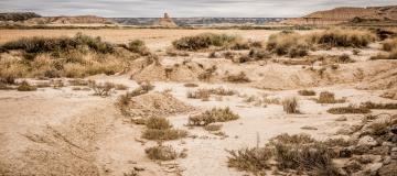 La crisi climatica sta inaridendo il pianeta