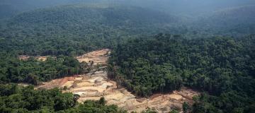 Le popolazioni indigene, le estrazioni illegali e il diritto a un ambiente pulito