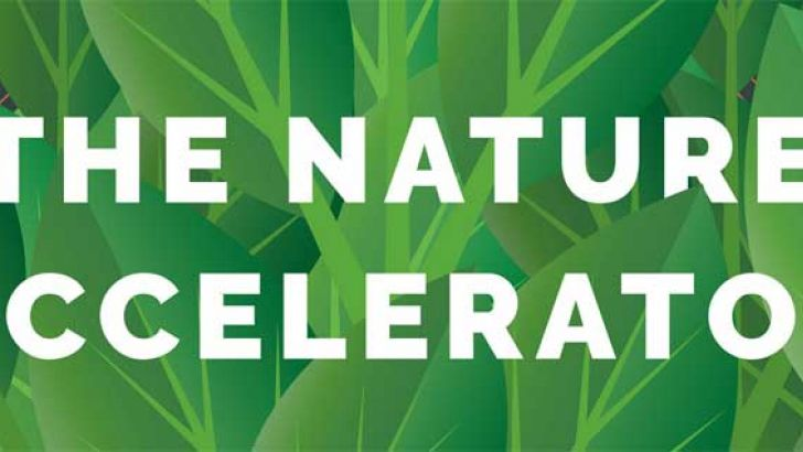 the nature accelerator